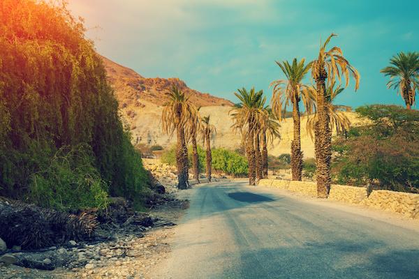 The Secrets Of Self-Hypnosis Intro: Adam Eason's Life On A Kibbutz, Aged 19