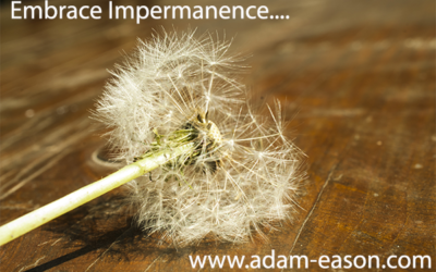 How To Embrace Impermanence and Why It Is So Important