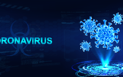 Coronavirus: False Claims, Theories and Conjecture